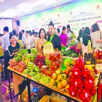 Hanoi promotes provincial products to meet residents' demand