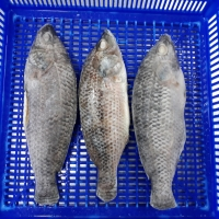 Vietnam seeks to catch up with seafood export targets