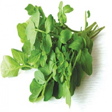 Organic Vietnam Watercress